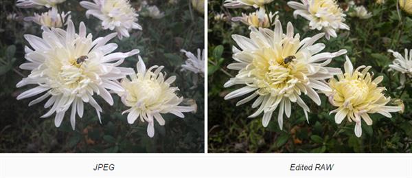 iPhone RAW/JPEG照片对比:这差别!